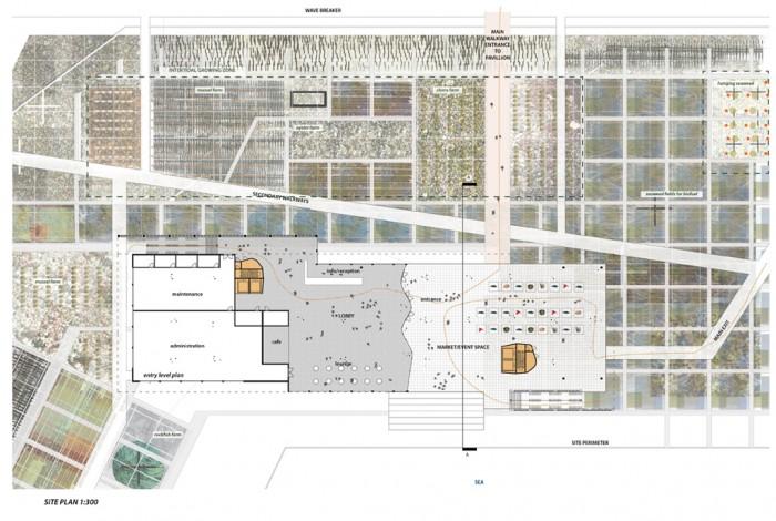 site-pavilion plan